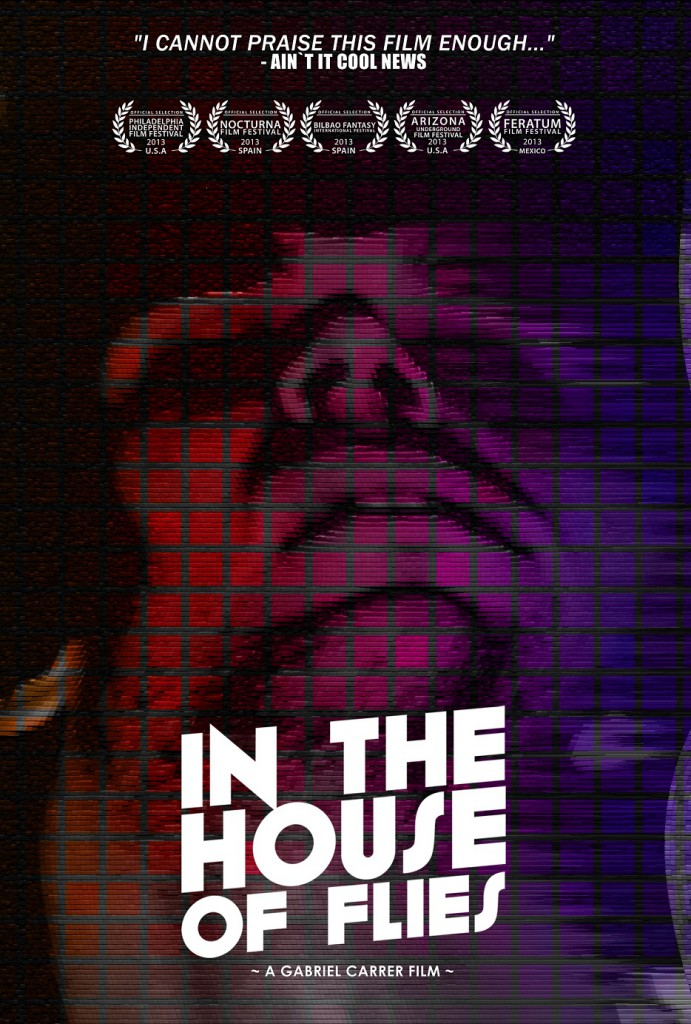 in the house of flies cover