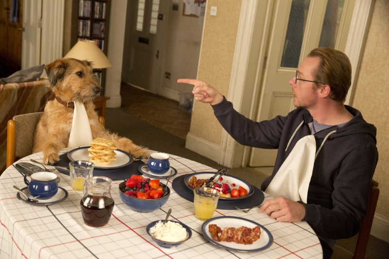 absolutely anything 1