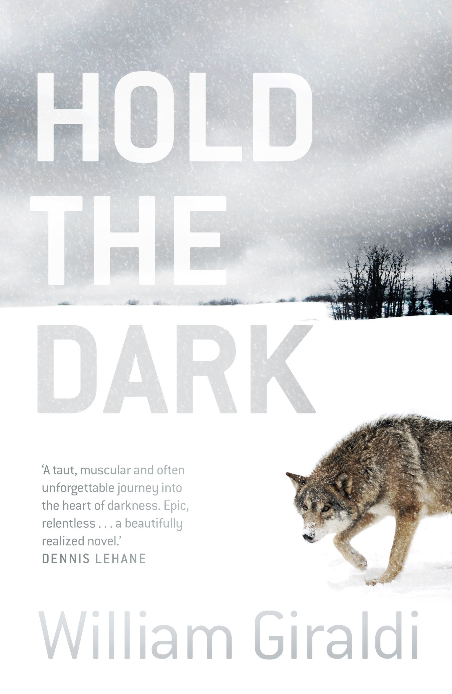 hold the dark novel