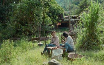 Tráiler de Memoria de Apichatpong Weerasethakul con Tilda Swinton